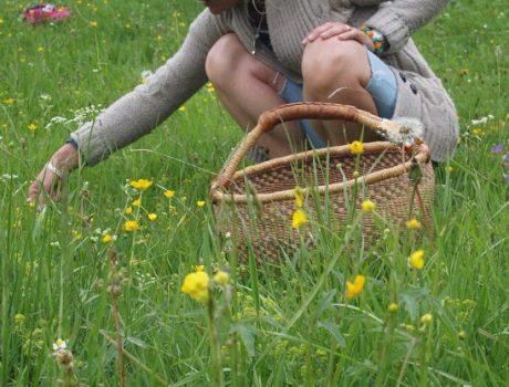 Au jardin d'Hildegarde
