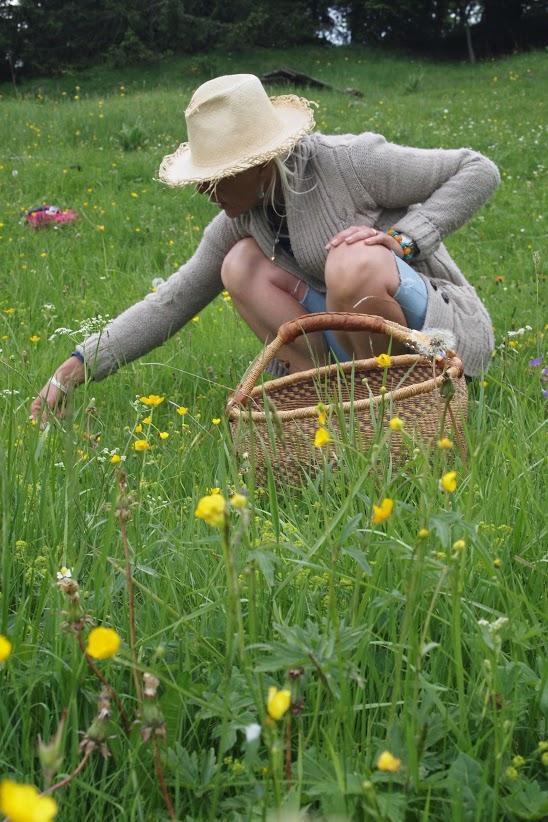 Accueil terra durabilis for Jardin hildegarde